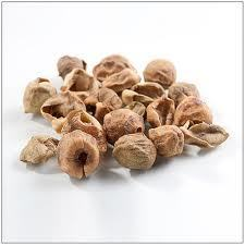 Dried Goonda